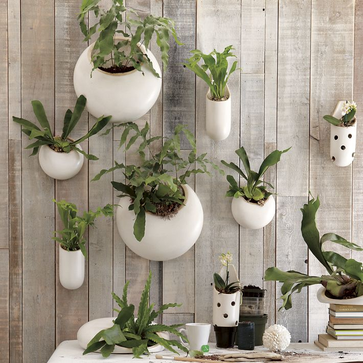 Objects Of Design Ceramic Wall Planters