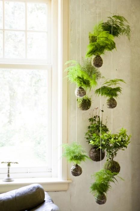mad about houseplants. Black Bedroom Furniture Sets. Home Design Ideas