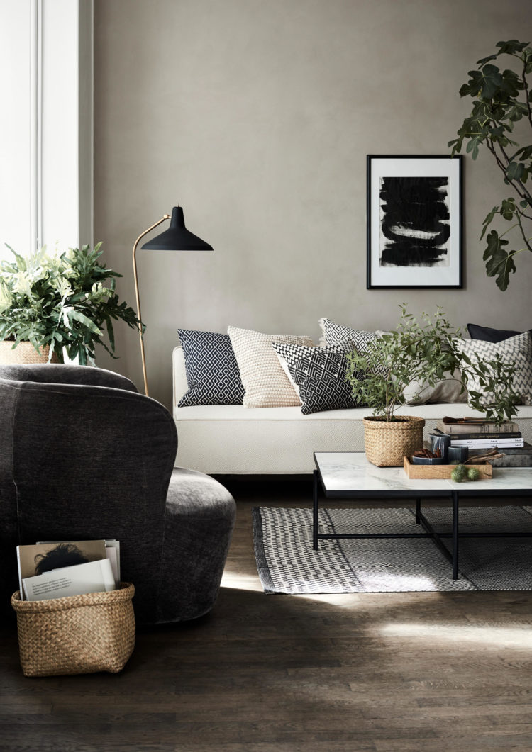 neutrals and plants for hm homei