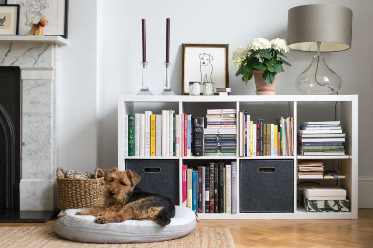 lowest price c2c1e 931b8 Five Best Modular Shelving Units - Mad About The House